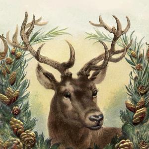 Vintage Deer - Square by Lebens Art