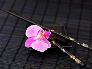 Zen Orchid by Lebens Art