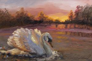 Swan at Sunrise, 2016 by Lee Campbell
