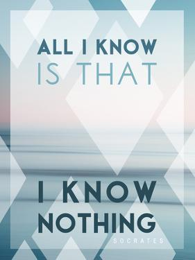 All I Know Is I Know Nothing by Lee Frost