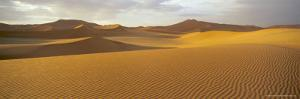 Panoramic View of Sand Dunes in Sand Sea, Sossusvlei, Namib Naukluft Park, Namibia, Africa by Lee Frost