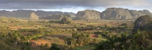 Panoramic View of Vinales Valley by Lee Frost