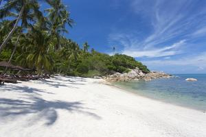 Private Secluded Beach Fringed by Palm Trees at the Silavadee Pool Spa Resort Near Lamai by Lee Frost