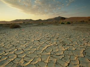Sunbaked Mud Pan, Cracked Earth, Near Sossusvlei, Namib Naukluft Park, Namibia, Africa by Lee Frost