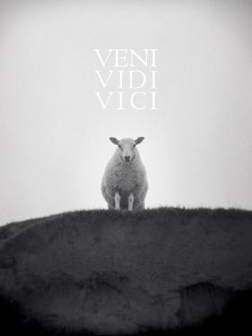 Veni, Vidi, Vici by Lee Frost