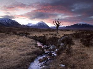 Winter View of Rannoch Moor at Sunset, Near Fort William, Scotland by Lee Frost