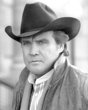 Lee Majors, The Fall Guy (1981)