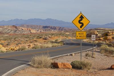 Desert Roads I
