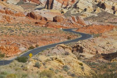 Desert Roads II