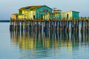 Half Moon Bay Pier by Lee Peterson