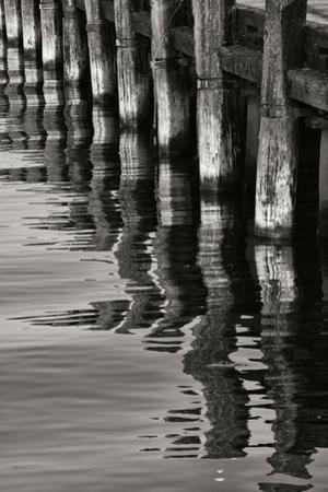 Pier Pilings 8