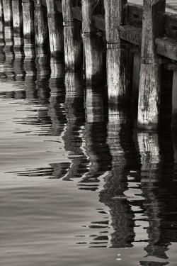 Pier Pilings 8 by Lee Peterson
