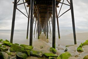 Under Oceanside Pier by Lee Peterson