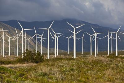 Windmills I