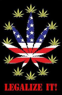 Legalize It! Pot Marijuana
