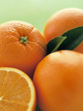 Oranges with Leaves Close Up by Leigh Beisch