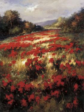 Carmine Meadow by Leila