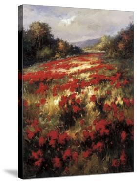 Carmine Meadow by Leila