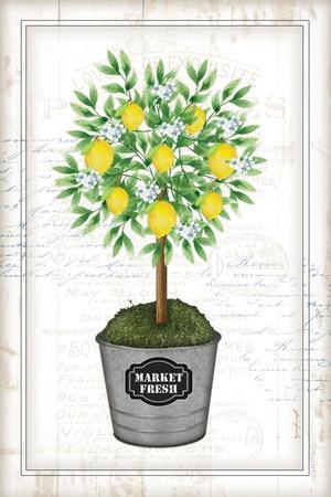 https://imgc.allpostersimages.com/img/posters/lemon-topiary_u-L-Q1IDD510.jpg?artPerspective=n