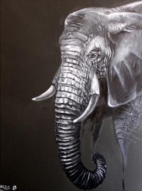 Elephant Grounds 1 by Lena Navarro
