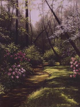 Spring Woods by Lene Alston Casey
