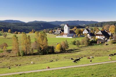 https://imgc.allpostersimages.com/img/posters/lenzkirch-saig-autumn-black-forest-baden-wurttemberg-germany_u-L-Q1EY5420.jpg?artPerspective=n
