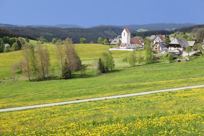 https://imgc.allpostersimages.com/img/posters/lenzkirch-saig-spring-black-forest-baden-wurttemberg-germany_u-L-Q1EY5PG0.jpg?artPerspective=n