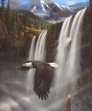 Eagle Portrait by Leo Stans
