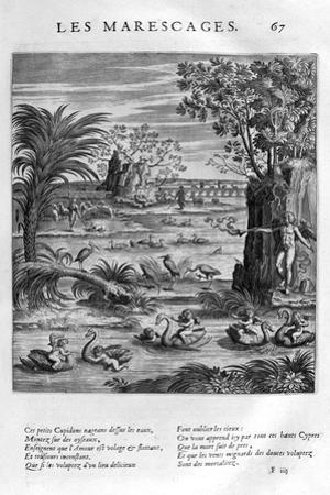 Marsh, 1615