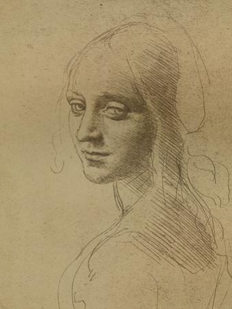 A Female Head, C1472-C1519 (1883)