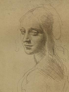 A Female Head, C1472-C1519 (1883) by Leonardo da Vinci