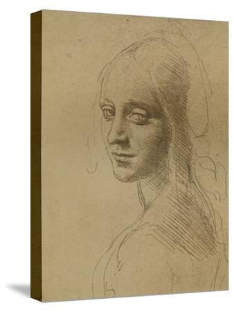 A Female Head, C1472-C1519 (1883) by Leonardo da Vinci