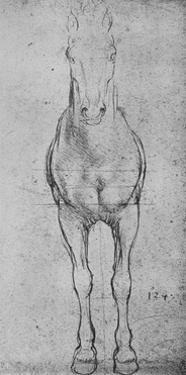 'A Horse Seen from the Front', c1480 (1945) by Leonardo Da Vinci