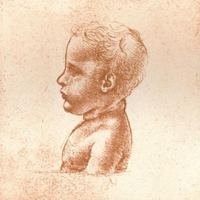 Bust of a Boy, C1472-C1519 (1883) by Leonardo da Vinci