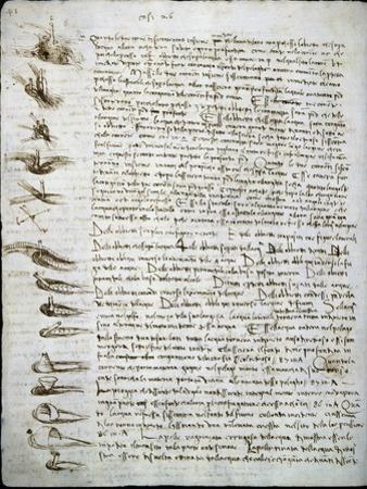 Codex Leicester: Water Flow by Leonardo da Vinci