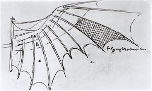 Detail of a Mechanical Wing, 1488-89 by Leonardo da Vinci