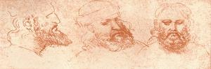 Drawing of Oriental Heads, in Red Chalk, C1472-C1519 (1883) by Leonardo da Vinci
