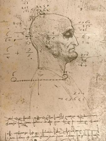 Drawing of the head of a criminal, c1472-c1519 (1883) by Leonardo Da Vinci