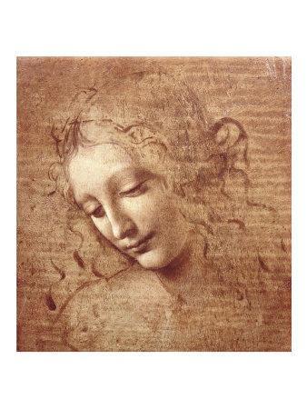Female Head (La Scapigliata), c.1508