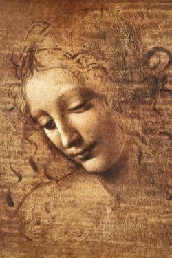 Leonardo Da Vinci (Female Head, La Scapigliata)