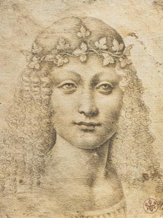 Giovane Bacco by Leonardo da Vinci
