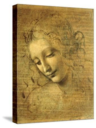 Head of a Young Woman La Scapigliata (the Lady of the Disheveled Hair)