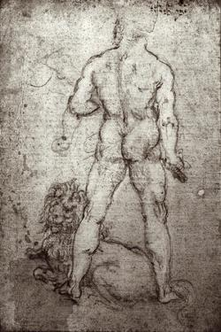 Hercules and the Nemean Lion, c.1504-8 by Leonardo da Vinci