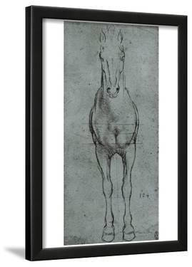 Leonardo da Vinci (Horse study) Art Poster Print
