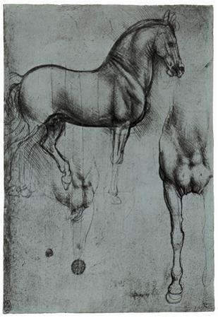 Leonardo da Vinci (Horse trials) Art Poster Print