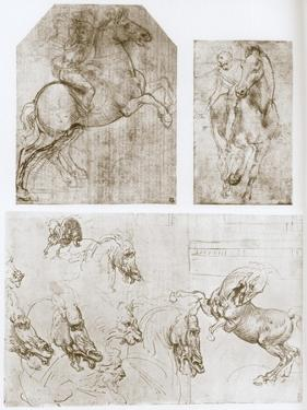 Horseman, 1480-1481 by Leonardo da Vinci