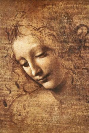 Leonardo Da Vinci (Female Head, La Scapigliata) Plastic Sign Poster Print
