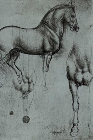Leonardo da Vinci (Horse trials) by Leonardo da Vinci