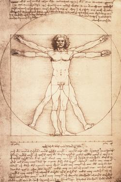 Leonardo da Vinci - Vitruvian Man, Proportions of the Human Figure Plastic Sign by Leonardo da Vinci
