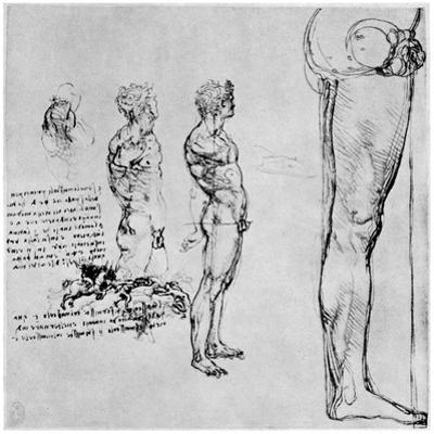 Nude Studies for 'The Battle of Anghiari, C1503-1505 by Leonardo da Vinci